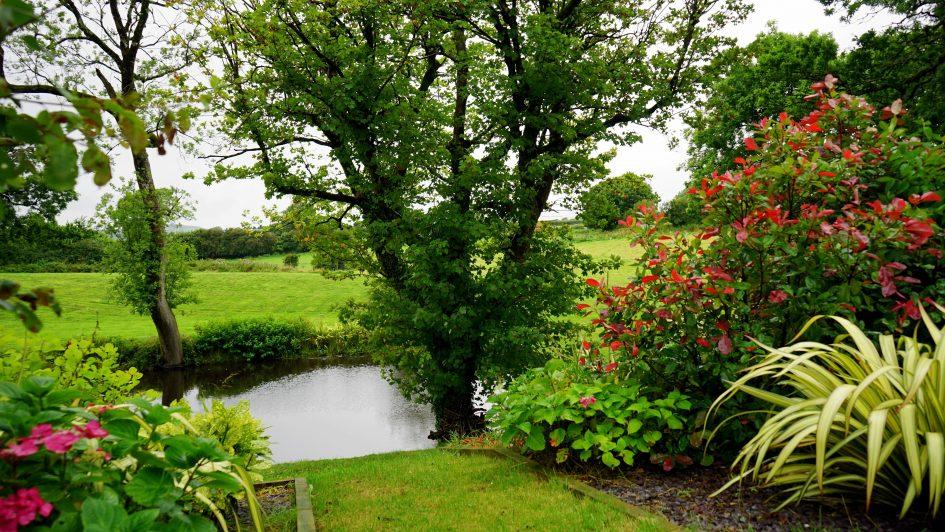 Planten-Tuin-Zeldenrustsierbestrating
